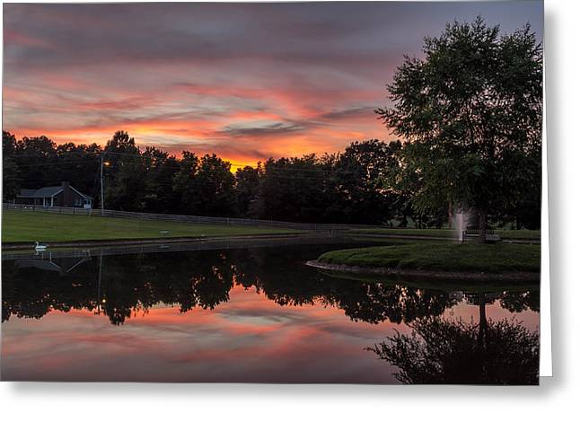 Trees Reflecting In Water Greeting Cards - Reflective Sunset Greeting Card by John Ray