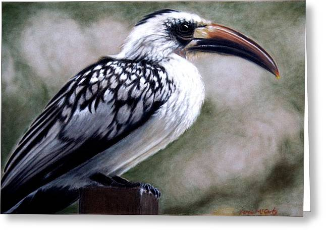 Office Pastels Greeting Cards - Regal Hornbill Greeting Card by Carol McCarty
