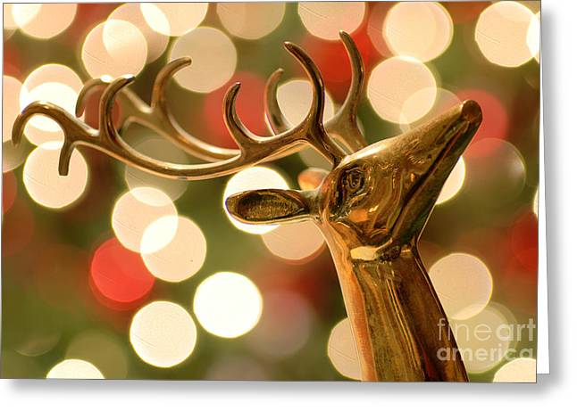 Regal Greeting Cards - Regal Reindeer Greeting Card by Amy Cicconi