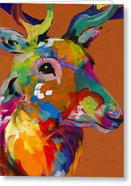 Colorado Artist Tracy Miller Greeting Cards - Regal Stare Greeting Card by Tracy Miller