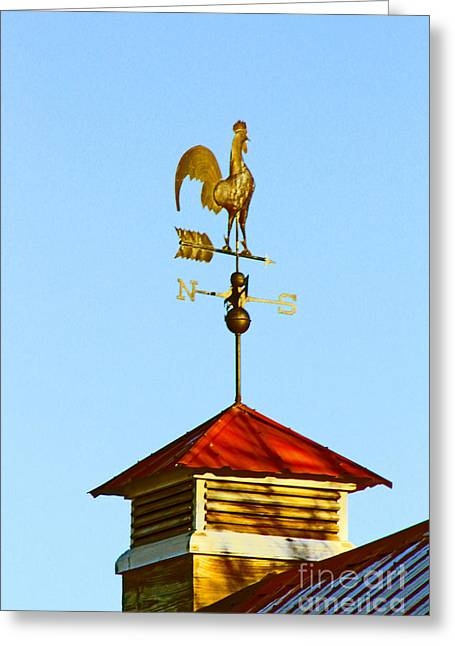 Weathervane Greeting Cards - Regal Weathercock Greeting Card by Dale Jackson