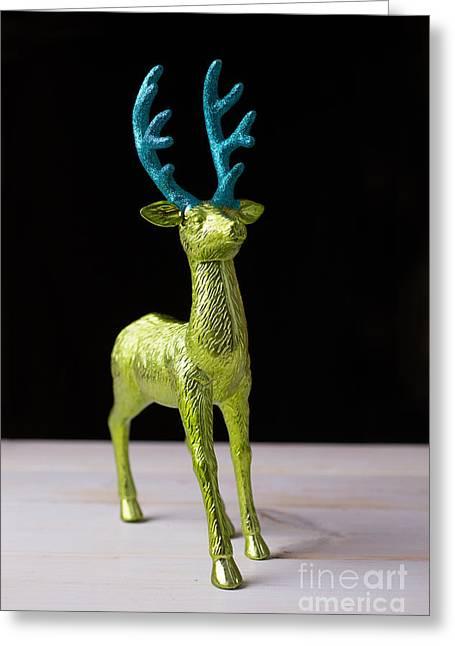 Hunting Trophy Greeting Cards - Reindeer Christmas Card Greeting Card by Edward Fielding
