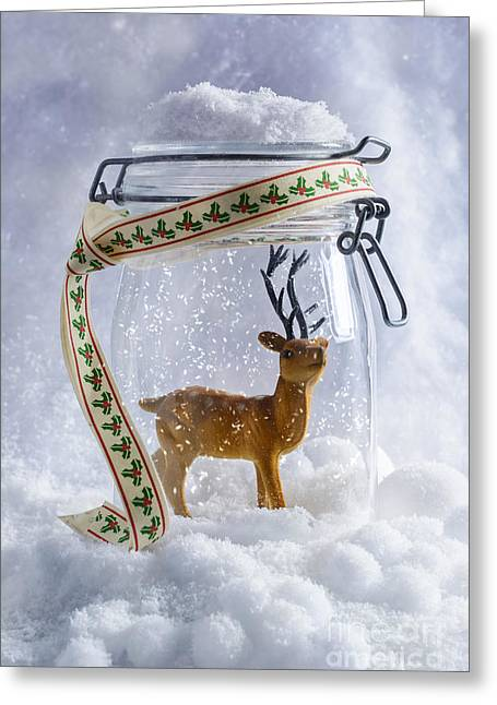 Snowball Greeting Cards - Reindeer Figure Greeting Card by Amanda And Christopher Elwell