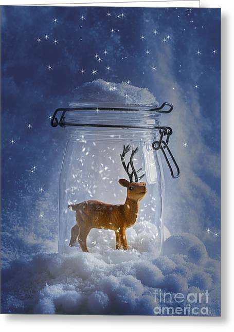 Snowball Greeting Cards - Reindeer Snowglobe Greeting Card by Amanda And Christopher Elwell
