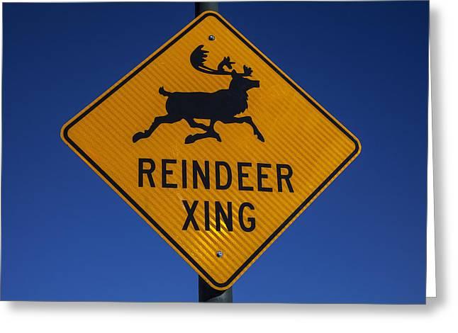Reindeers Greeting Cards - Reindeer Xing Greeting Card by Garry Gay