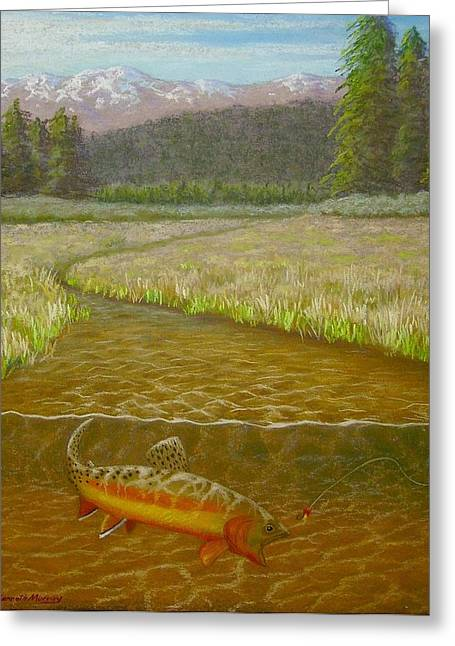 Golden Trout Greeting Cards - Rejected at Golden Trout Creek Greeting Card by Kenneth Murray