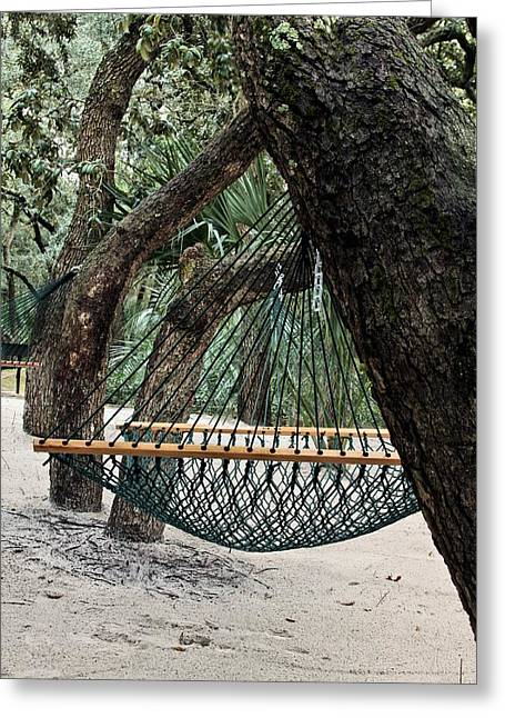 Oak Hammocks Greeting Cards - Relax in Florida Greeting Card by JC Findley