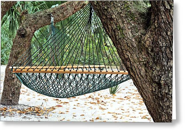 Oak Hammocks Greeting Cards - Relax Greeting Card by JC Findley