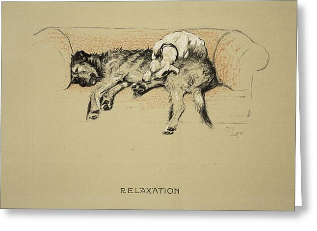 Terrier Dog Drawings Greeting Cards - Relaxation, 1930, 1st Edition Greeting Card by Cecil Charles Windsor Aldin