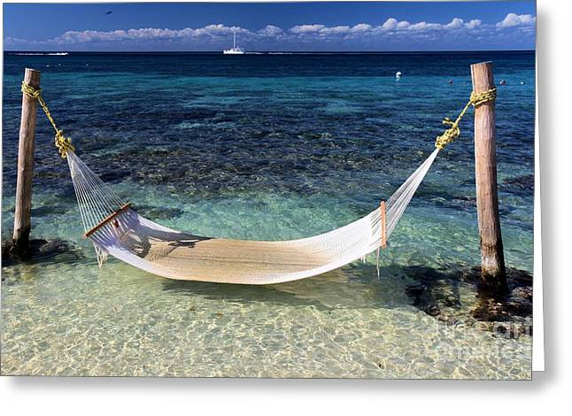 Tropical Beach Greeting Cards - Relaxation Greeting Card by Adam Jewell
