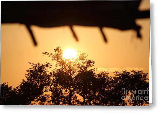 Bamboo House Greeting Cards - Relaxed sunset Greeting Card by Four Hands Art