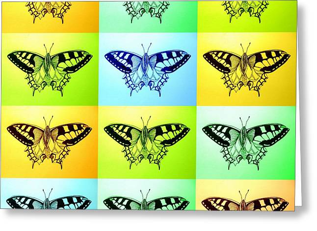 Blue And Green Drawings Greeting Cards - Relaxing butterflies Greeting Card by Cathy Jacobs