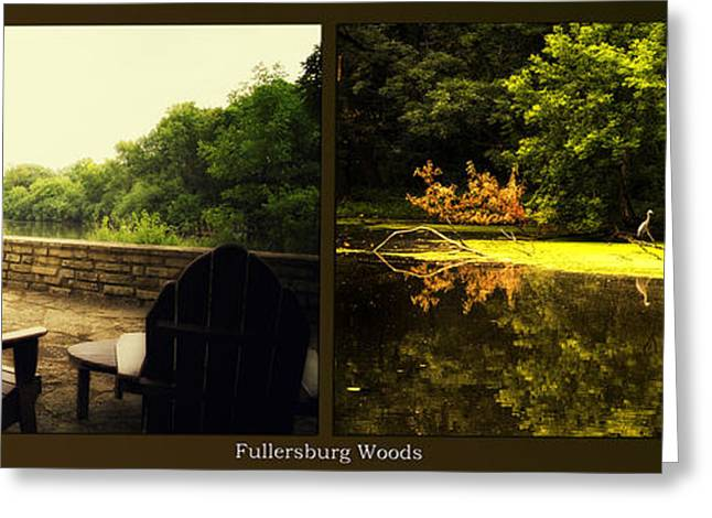 Nature Center Pond Greeting Cards - Relaxing By The River Looking For Breakfast Fullersburg Woods 2 Panel Greeting Card by Thomas Woolworth