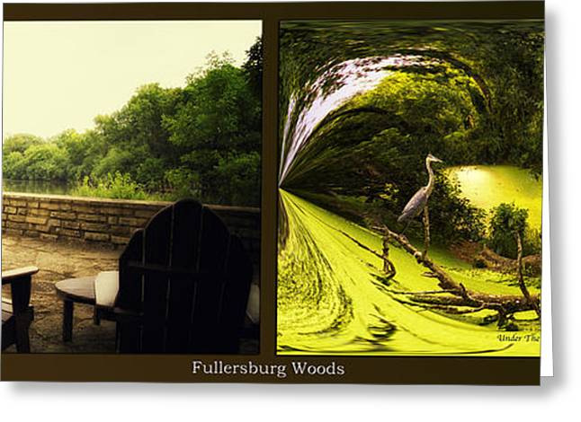 Nature Center Pond Greeting Cards - Relaxing By The River Under The Canopy Fullersburg Woods 2 Panel Greeting Card by Thomas Woolworth