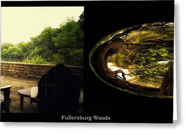 Nature Center Pond Greeting Cards - Relaxing By The River Wood Fullersburg Woods 2 Panel Greeting Card by Thomas Woolworth