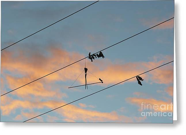 Kite Greeting Cards - Remains Of Kite On The Electric Power Line Greeting Card by Michal Boubin