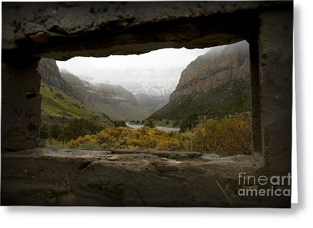 Snow Capped Greeting Cards - Remains of Time Greeting Card by Wildlife Fine Art