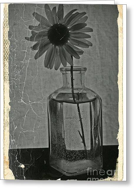 Aster Mixed Media Greeting Cards - Remember BW Vintage 8 Greeting Card by Chalet Roome-Rigdon