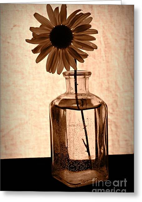 Recently Sold -  - Floral Still Life Greeting Cards - Remember in Sepia Greeting Card by Chalet Roome-Rigdon