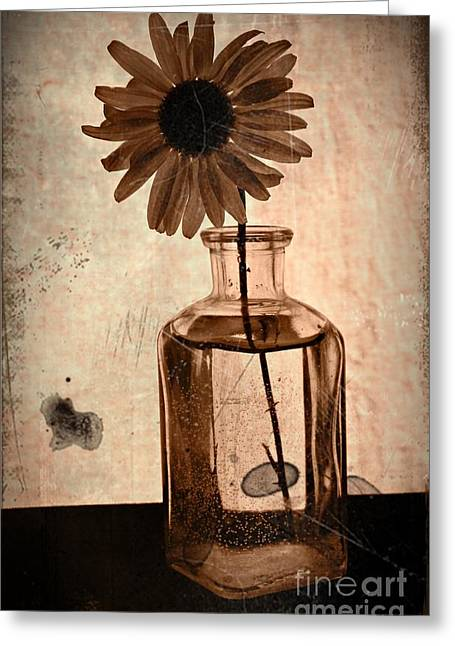 Aster Mixed Media Greeting Cards - Remember Sepia 2 Greeting Card by Chalet Roome-Rigdon