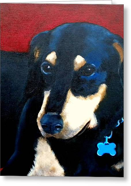 Collar Greeting Cards - Remembering Doby Greeting Card by Debi Starr