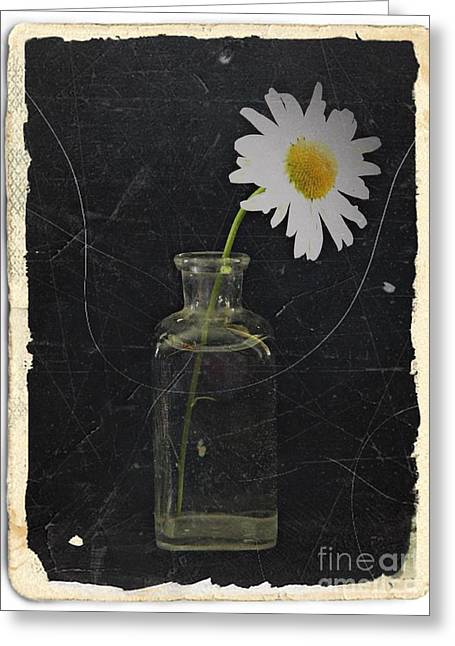 Aster Mixed Media Greeting Cards - Remembrance 7 Greeting Card by Chalet Roome-Rigdon