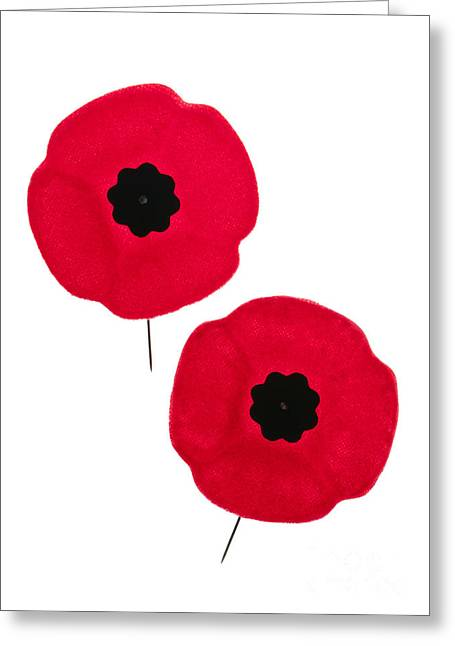 Lapel Greeting Cards - Remembrance Day poppies Greeting Card by Elena Elisseeva