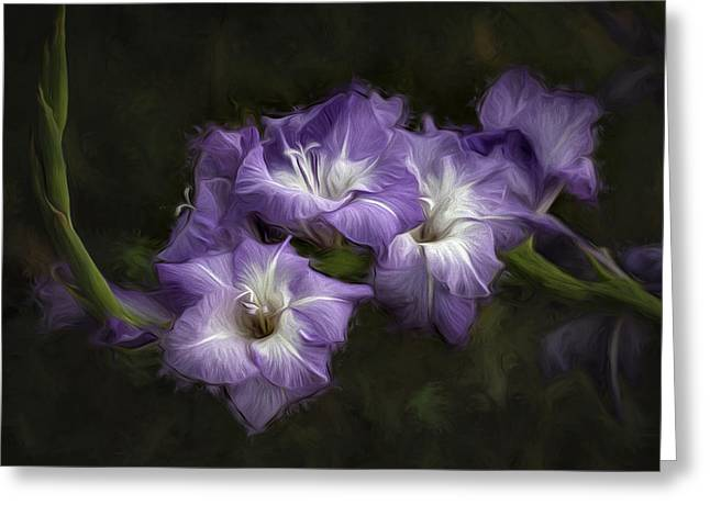 Gladiole Greeting Cards - Remembrance Greeting Card by Vronja Photon