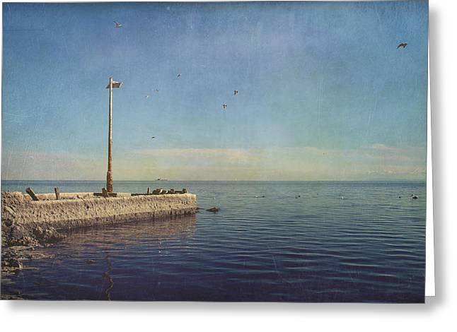 Pier Digital Greeting Cards - Reminders Greeting Card by Laurie Search