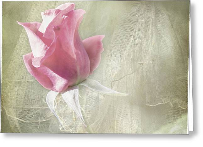 Lindaleesart Greeting Cards - Reminiscing Greeting Card by Linda Lees
