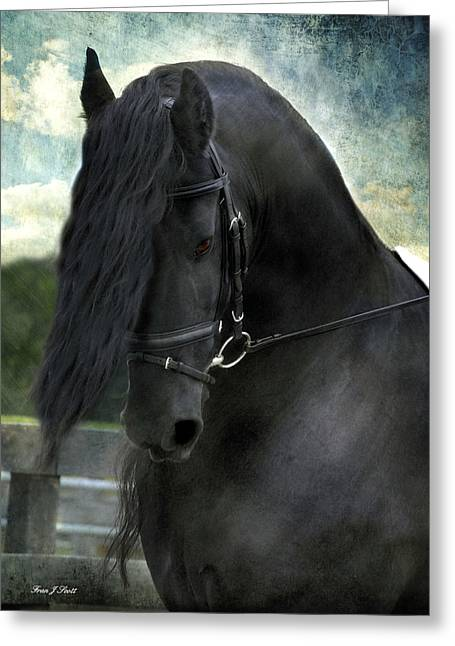 Horse Prints Greeting Cards - Remme Greeting Card by Fran J Scott