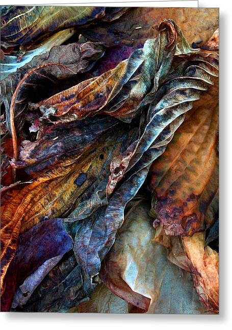 Brown Leaves Greeting Cards - Remnants Greeting Card by Jessica Jenney