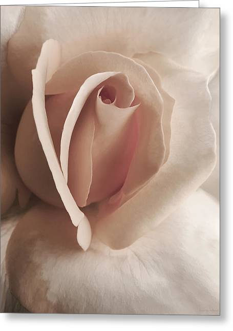 Light Peach Greeting Cards - Renaissance Rose Flower Greeting Card by Jennie Marie Schell