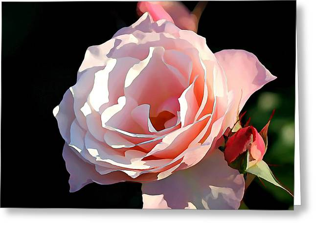 Renewing Greeting Cards - Renewal Greeting Card by Jean Connor
