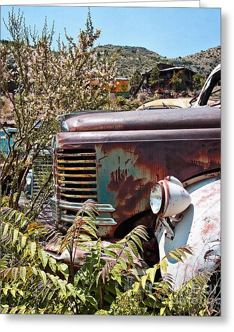 Rusted Cars Greeting Cards - REO Minus Diamond Greeting Card by Lee Craig