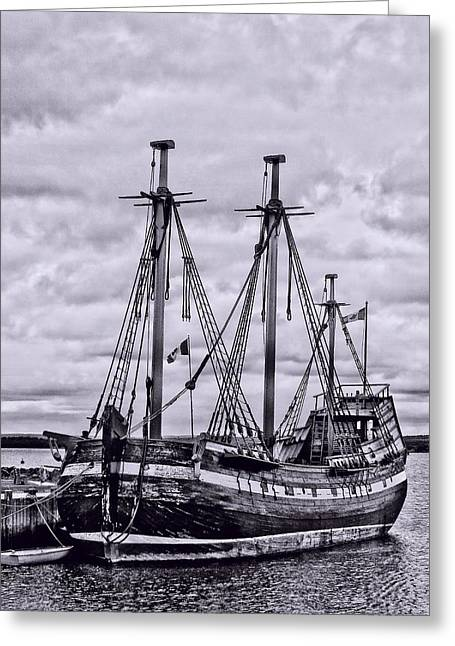 Sailboats In Harbor Greeting Cards - Replica of the Ship Hector Greeting Card by Kathleen Sartoris