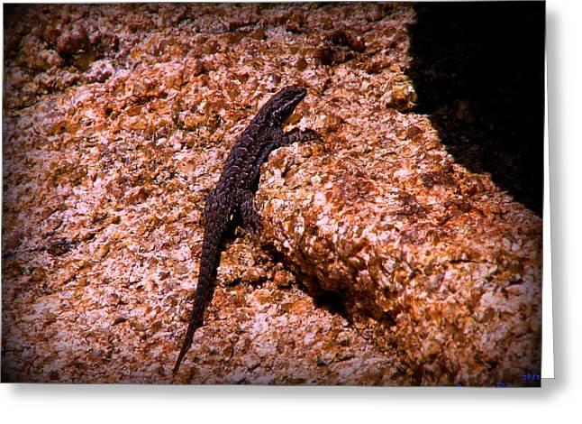 Watson Lake Greeting Cards - Reptile Life at the Lake Greeting Card by Aaron Burrows