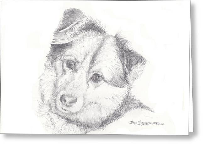 House Pet Drawings Greeting Cards - Rescue dog Sadie  Greeting Card by Jim Hubbard