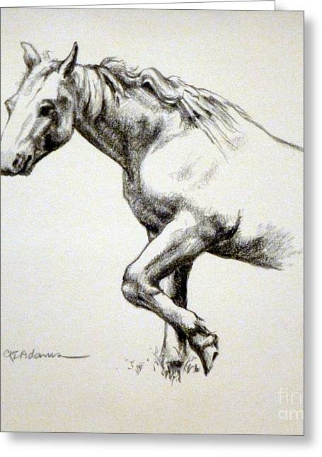 Rescue Drawings Greeting Cards - Rescue Horse Greeting Card by Cheryl Emerson Adams