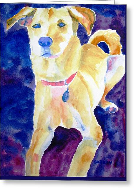 Mixed Labrador Retriever Greeting Cards - Rescue Lab - dog painting Greeting Card by Carlin Blahnik