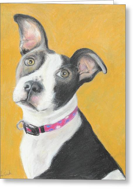 Puppies Pastels Greeting Cards - Rescued Pit Bull Greeting Card by Jeanne Fischer