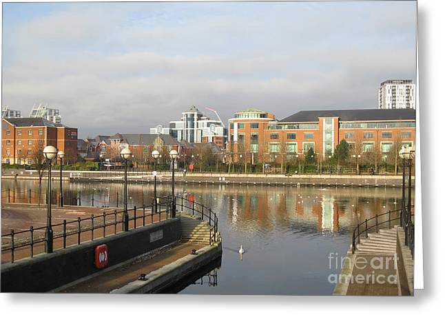 Swans... Greeting Cards - Residential buildings in Salford Quays Manchester Greeting Card by Kiril Stanchev