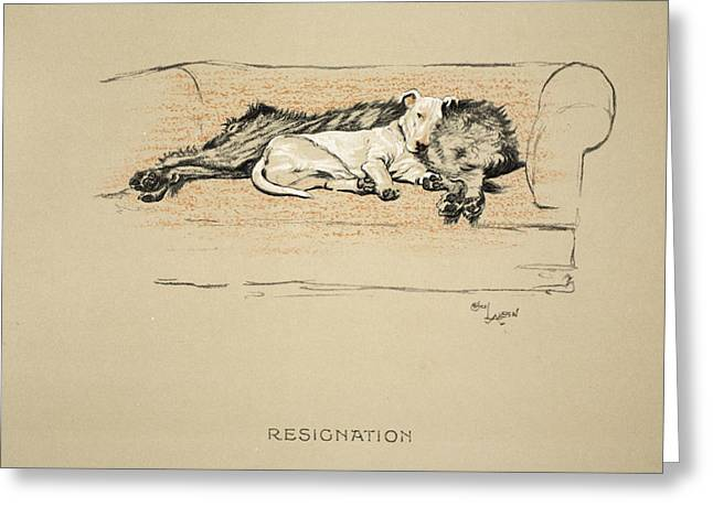 Terrier Dog Drawings Greeting Cards - Resignation, 1930, 1st Edition Greeting Card by Cecil Charles Windsor Aldin