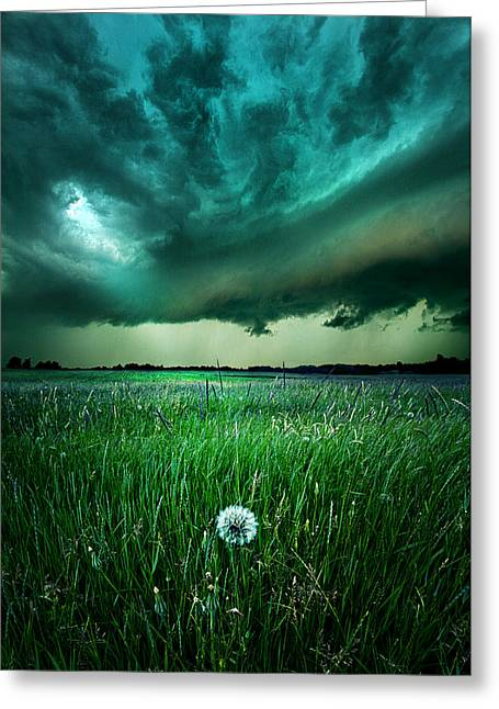 Summer Storm Photographs Greeting Cards - Resolute Greeting Card by Phil Koch
