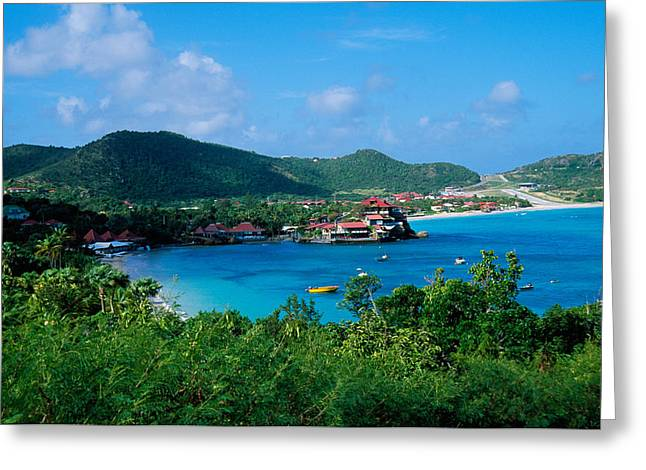Boats In Harbor Greeting Cards - Resort Setting, Saint Barth, West Greeting Card by Panoramic Images
