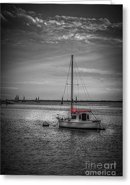 Yacht Club Greeting Cards - Rest Day b/w Greeting Card by Marvin Spates