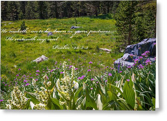 Renewing Greeting Cards - Rest For the Soul Greeting Card by Lynn Bauer