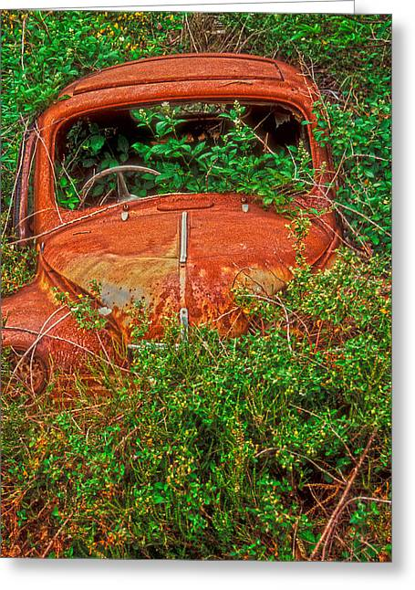 Overruns Photographs Greeting Cards - Rest in Peace my sweet Renault Greeting Card by Laurence Delderfield