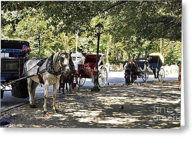 Madeline Ellis Greeting Cards - Rest Stop - Central Park Greeting Card by Madeline Ellis