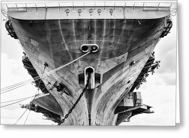 Carrier Greeting Cards - Resting 67 Greeting Card by Scott  Wyatt